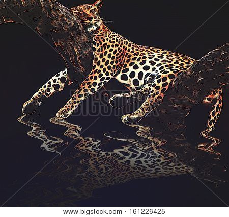 leopard sleeping on a tree with his reflex on the water
