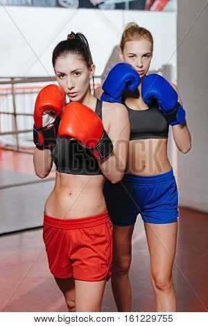 Sports is vital. Attractive well trained brunette and blonde athletes holding a pose in front of a ring in a gym while wearing special sportswear