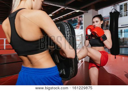 Help me out with that. Two pretty athletic sportswomen working out in a gym by boxing and practicing their fighting skills on special pads