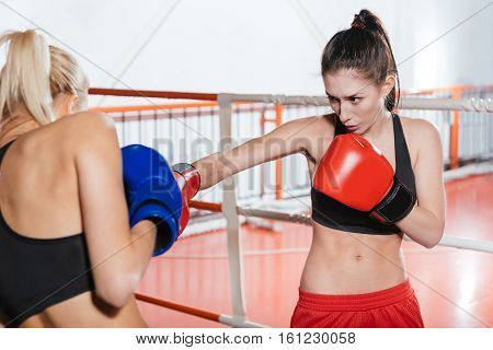Be careful. Two skillful pretty athletes working out by boxing in a gym on a ring while wearing special boxing gloves