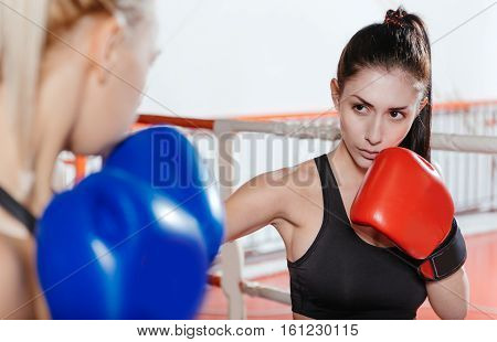 Intense moment. Sexy skillful young boxers fighting a sparring in a gym wearing their boxing gloves and special sportswear