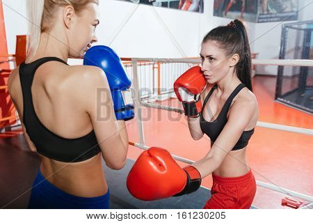 Here comes a hit. Athletic strong young lady giving a left hand jab to her blonde enthusiastic partner while wearing special boxing gloves