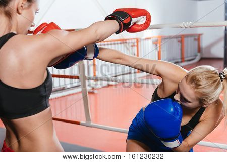 Sorry for that one. Attractive skillful female boxer giving her partner a straight right hook during the boxing session on the ring