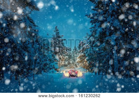 Winter Driving at snowfall night - Lights of car and winter snowy road in dark forest, big fir trees covered snow