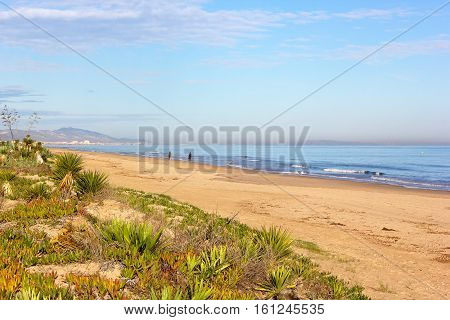 Wide sandy beach in Costa Blanca Valencia region Spain. Native plants and horsemen on the beach.