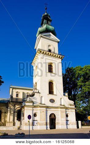 church in Zamosc, Poland poster