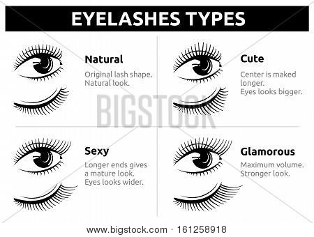 Beautiful girl eyelashes, female makeup vector. Beauty woman eyelash, illustration of makeup eyelashes