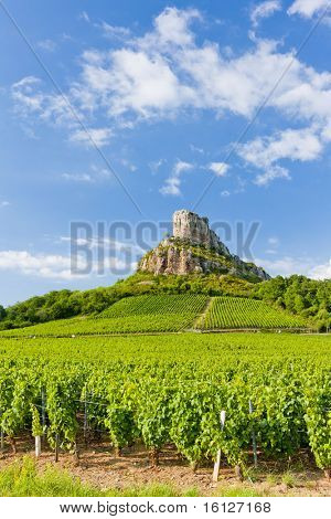 Solutre Rock with vineyards, Burgundy, France poster
