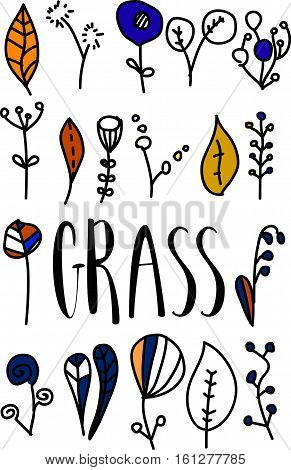 Lettering - grass. grass lettering. grass illustration with leaves and lettering. Calligraphy postcard or poster graphic design lettering element. Hand written style postcard design. Photography overlay sign detail.