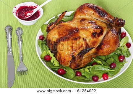 Whole Grilled Chicken, Spinach, Arugula And Cranberry Salad
