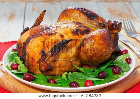 Whole Chicken Roasted In Oven On White Plate
