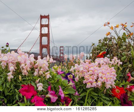 Golden Gate Bridge with colored flowers in a cloudy day