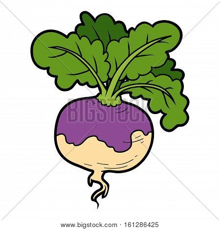 Vector color illustration, colorful vegetables, cartoon turnip