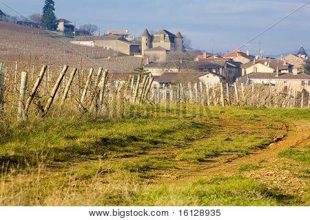 Pouilly, Burgundy, France