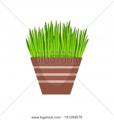 Home Grass Vegetation In The Flowerpot, Flower Shop Decorative Plants Assortment Item Cartoon Vector Illustration. Natural Floral Composition From Florist Store Isolated Item.