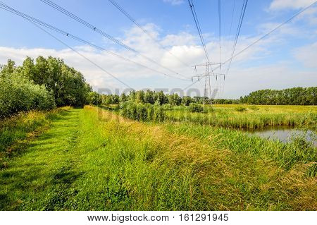 High voltage lines and pylons in a large nature reserve in the Netherlands. It's a sunny day in the summer season.