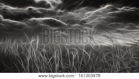 Black and White Heavy abstraction Field and Sky  3D Render