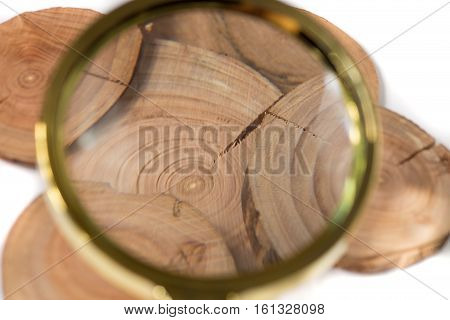 Concept dendrochronology. tree trunks clearly visible annual rings, magnifier with handle on white background