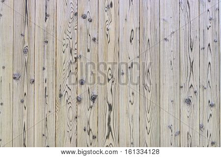 Wooden Wall, Wood Texture Background.