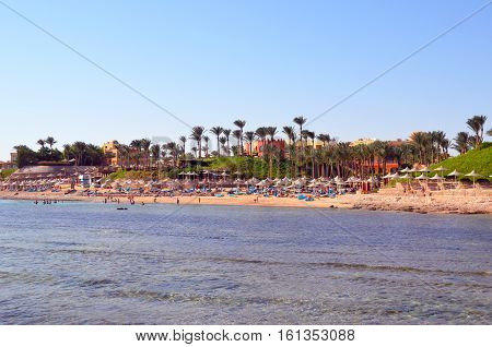 Egypt. Sharm El-Sheikh. Relax on the beach. Red sea. Coral reef.