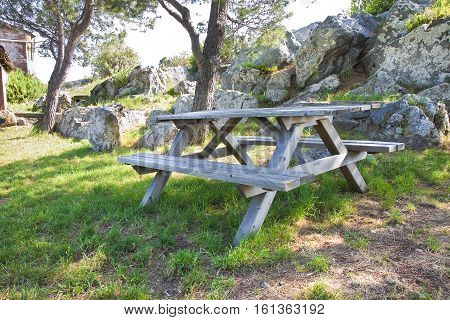 Picnic table in a Tuscany pinewood (Italy)