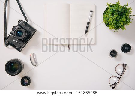Piece of nature. Top view of a green house plant standing near the open notebook while being on the white desk