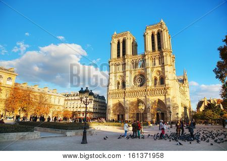 PARIS - NOVEMBER 2: Notre Dame de Paris cathedral on November 2 2016 in Paris France. It's the finest example of French Gothic architecture and the largest and most well-known church buildings in the world.
