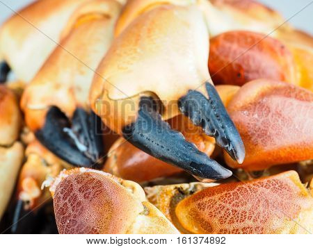 Pile Of Orange Boiled With Black Tip, Crab Claws, At Closeup