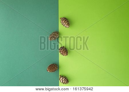 Pine cones on greenery background. Top view, flat lay. Copy space for text. Xmas, winter holidays concept