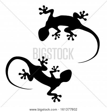 Vector lizard - flat pictograms. Logo illustration. Isolated on white