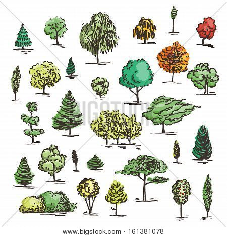Set of hand drawn colorful trees. Ink style. Vector collection.