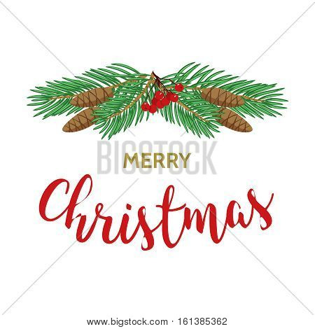 Christmas greeting card background poster isolated on white background. Vector stock illustration of spruce branch with cones