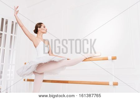 Elegance in the movements. Serious female wearing points and white leotard with tutu standing in semi position while stretching before performance