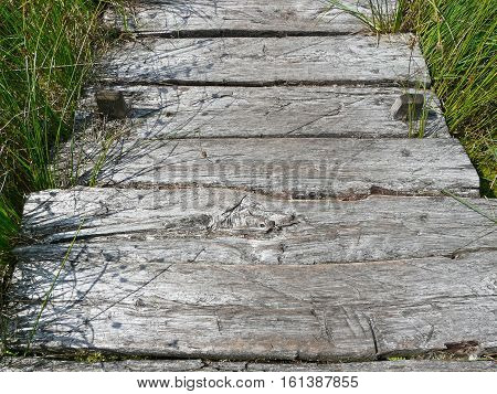 Old wooden walkway in the moor in North Germany