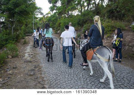 Istanbul Turkey - September 29 2013: Buyukada Aya Yorgi monastery road. On the way to Aya Yorgi monastery journey with donkeys sightseeing.