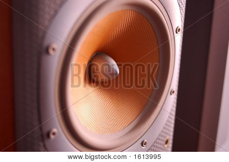 Loudspeaker Detail
