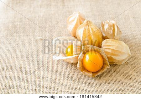 cape gooseberry fruit ground cherry organic food vegetable yellow berry tasty