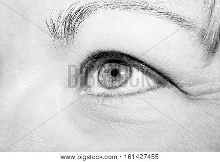 A beautiful insightful look woman's eye. Monochrome