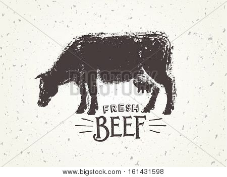 Graphic illustration of the cow with inscriptions, hand-drawn, vector illustration.