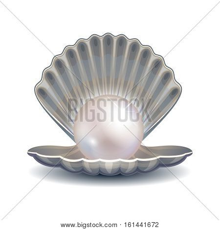 Pearl in shell vector illustration. Open sea shell with pearl for fashion logo or poster. Gleam pearl bright and glitter