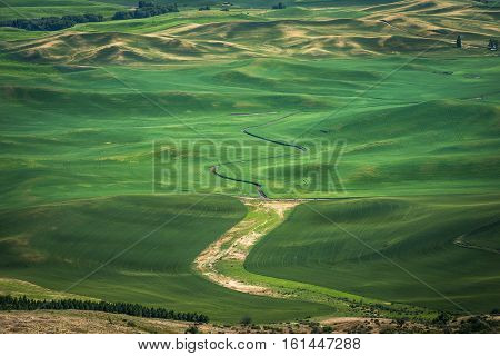 Steptoe Butte, Palouse Country