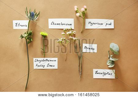 Collection of flowers on beige background