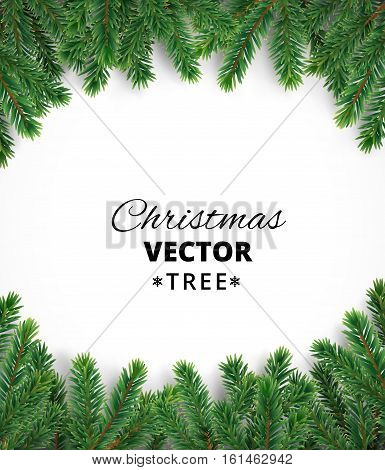 Background with vector christmas tree branches and space for text. Realistic fir-tree border, frame isolated on white. Great for christmas cards, banners, flyers, party posters.