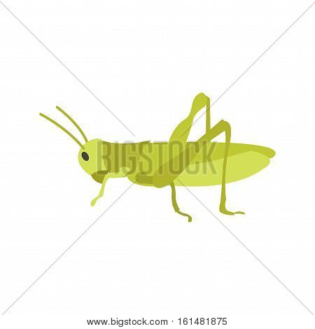 Grasshoppers, green, animal icon vector image. Can also be used for spring. Suitable for mobile apps, web apps and print media.