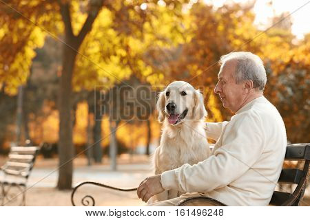 Senior man and big dog sitting on bench in park