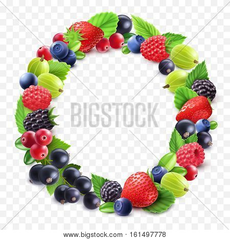 Colorful berries round set with gooseberry strawberry cranberry bilberry black currant raspberry on transparent background isolated vector illustration