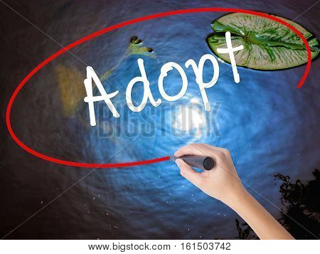 Woman Hand Writing Adopt  With Marker Over Transparent Board