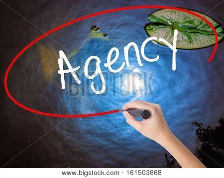 Woman Hand Writing Agency With Marker Over Transparent Board
