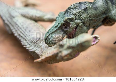 a tyrannosaurus biting an allosaurus horizontal composition