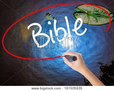 Woman Hand Writing Bible With Marker Over Transparent Board